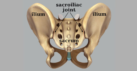 "Featured image for ""Sacroiliac Movement – Nutation and Counternutation"""