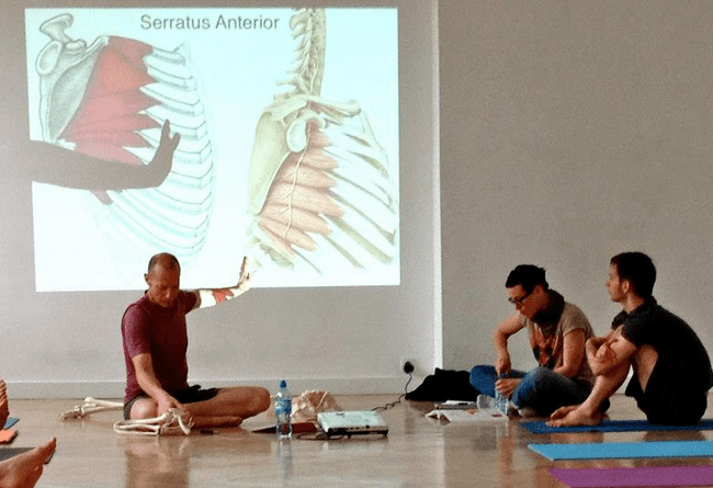 Yoga anatomy course