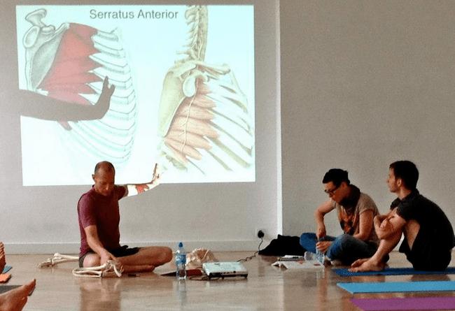 Advanced Yoga Anatomy Course - Yoganatomy