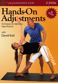 yoga_adjustment_dvd_small
