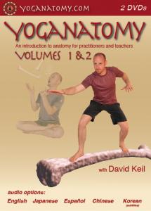 yoga anatom video