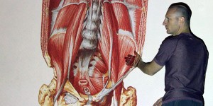 slide_psoas_yogaanatomy