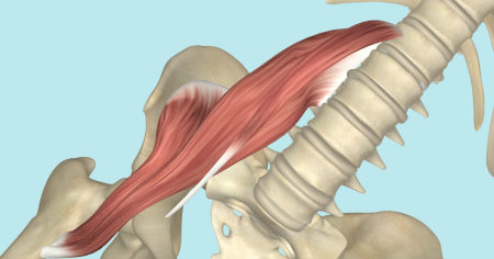"Featured image for ""The Psoas Muscle"""