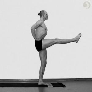 the rectus femoris muscle  yoganatomy