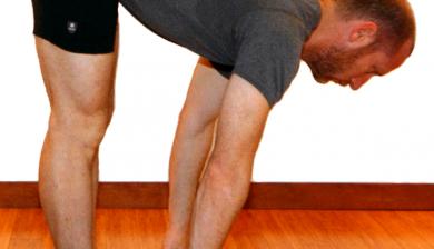 sun salutations yoga anatomy