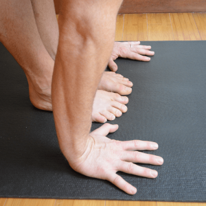 sun salutations yoga anatomy fingers front