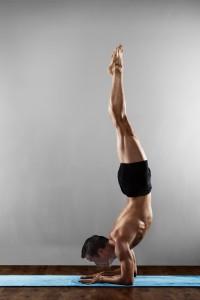 triceps-brachii-pincha-mayurasana