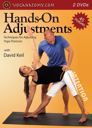 Yoga Adjustments Video Dvd Download Hands On Adjustments