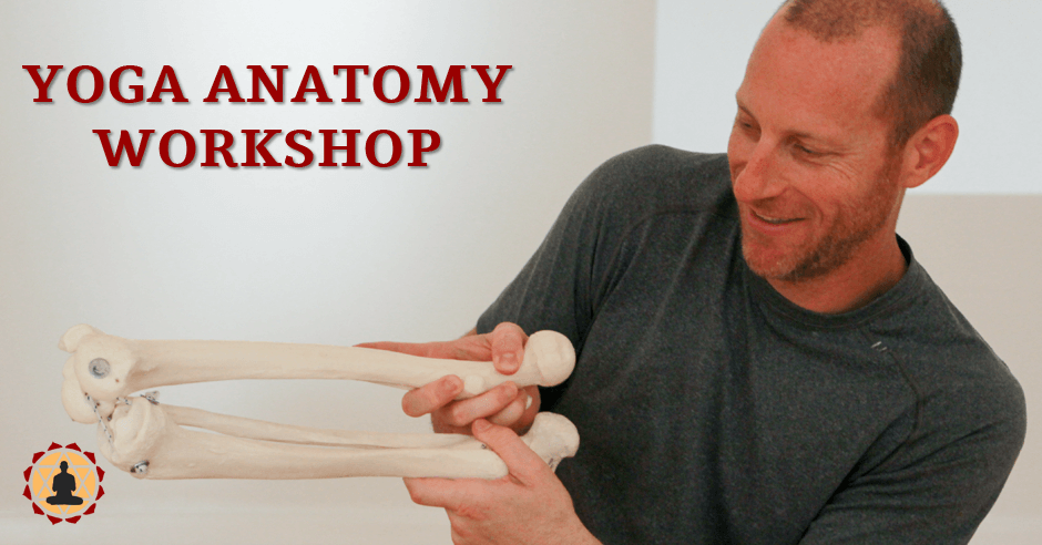 Yoga Anatomy Workshop - Applied Anatomy for Yoga