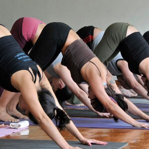 ashtanga yoga bandha workshop
