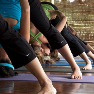 ashtanga yoga primary workshop
