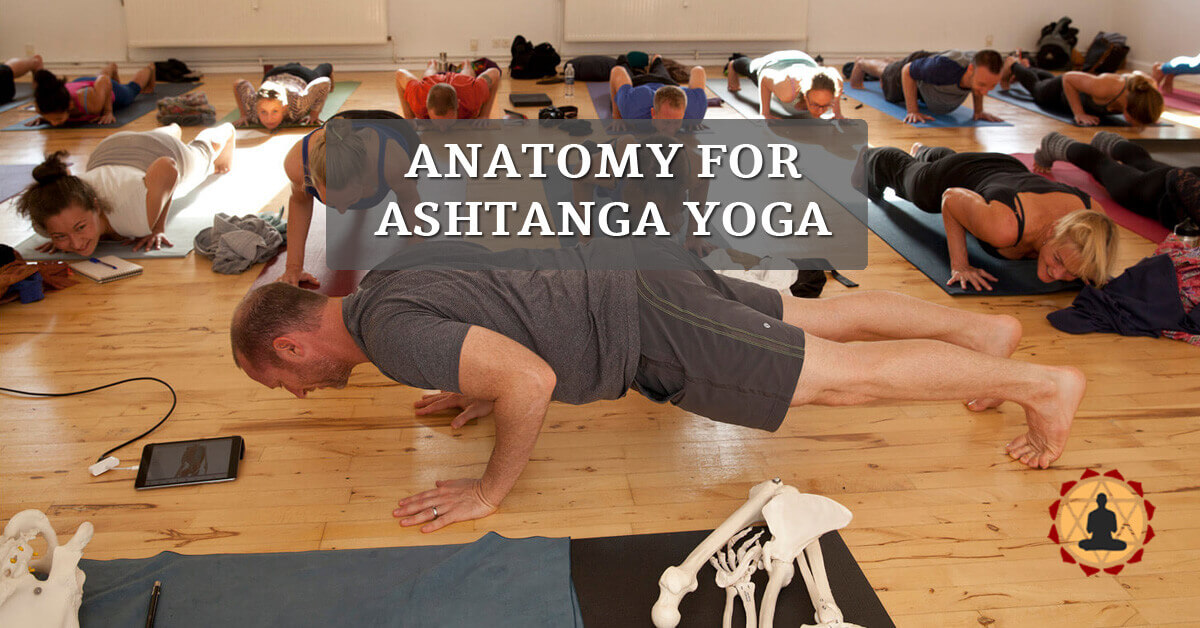Ashtanga Yoga Anatomy Workshops - Yoganatomy