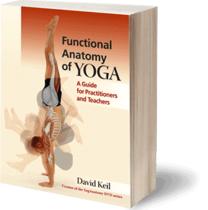 Yoga Anatomy Book - Functional Anatomy of Yoga by David Keil