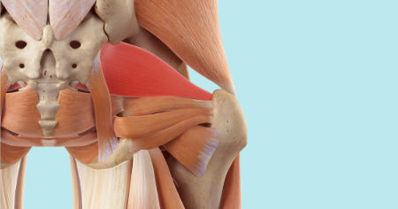 """Featured image for """"Deep Six Lateral Rotators"""""""