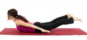 the hamstrings  yoga anatomy