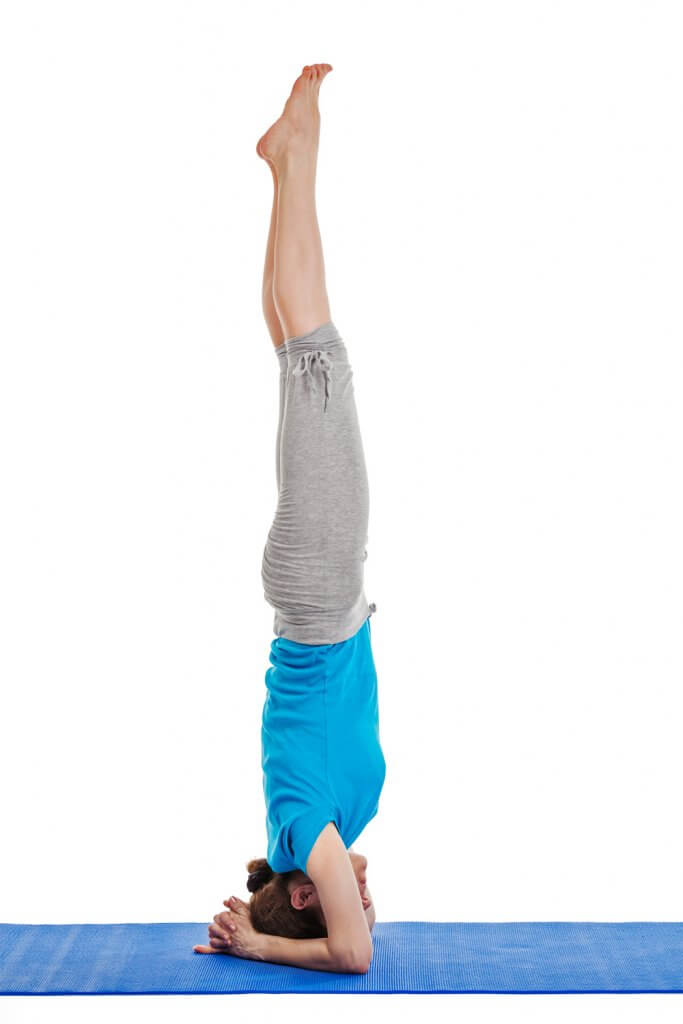 levator scapulae muscle in headstand