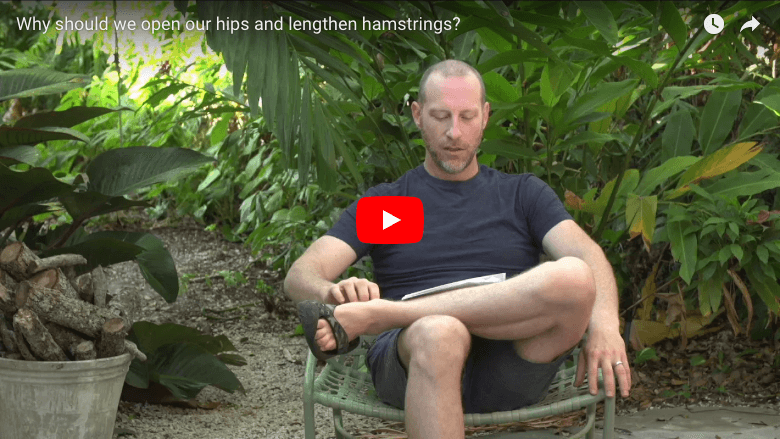 Why should we open our hips and lengthen hamstrings?