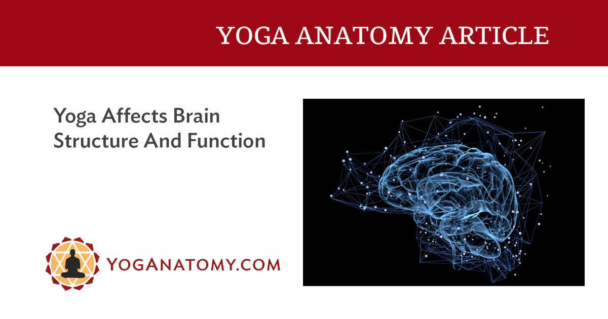 Yoga Affects Brain Structure And Function
