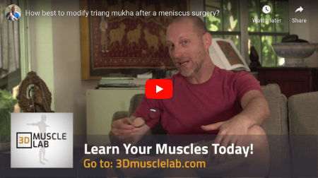 Modify Triang Mukhaikapada Paschimottanasana After Meniscus Surgery