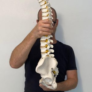 Low Back Pain From A Reduced Lumbar Curve
