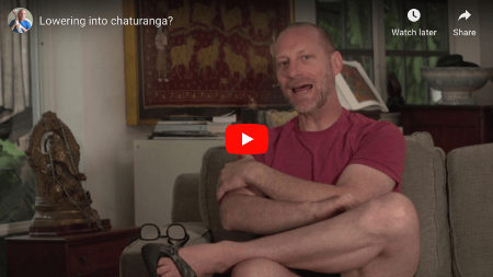 Mechanics Of Lowering Into Chaturanga
