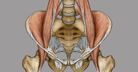 """Featured image for """"The Psoas Muscle: Ultimate Guide"""""""